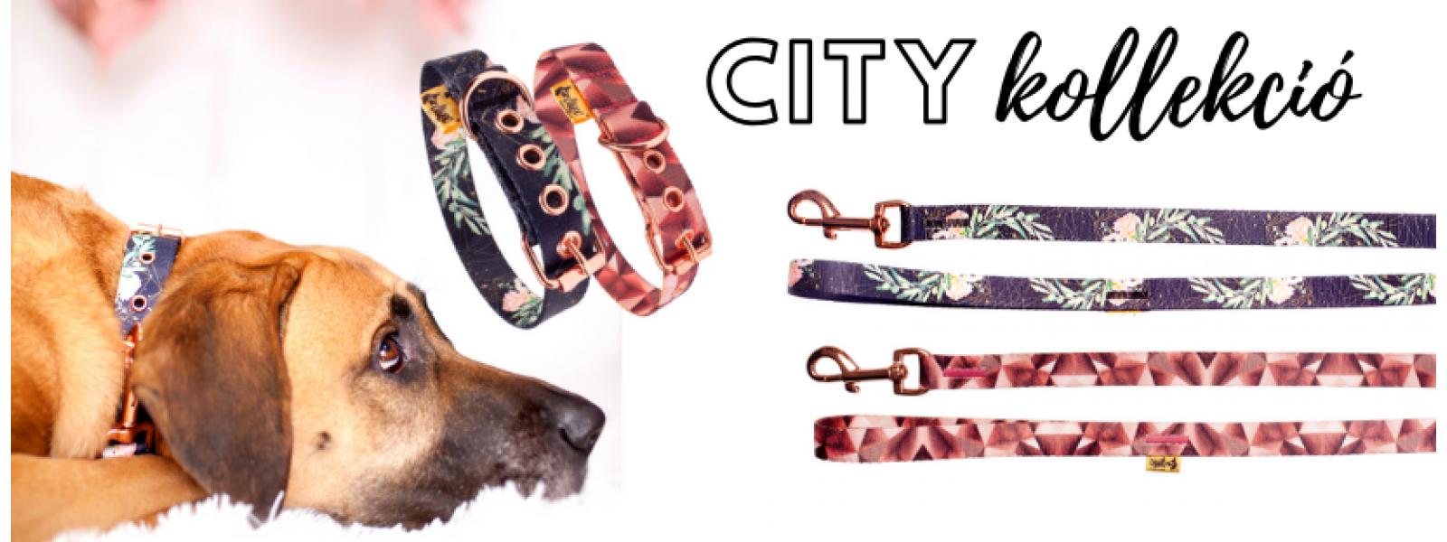 """""""City"""" nyakörvek és pórázok"""